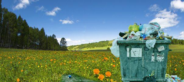 kontenery śmieci poznań